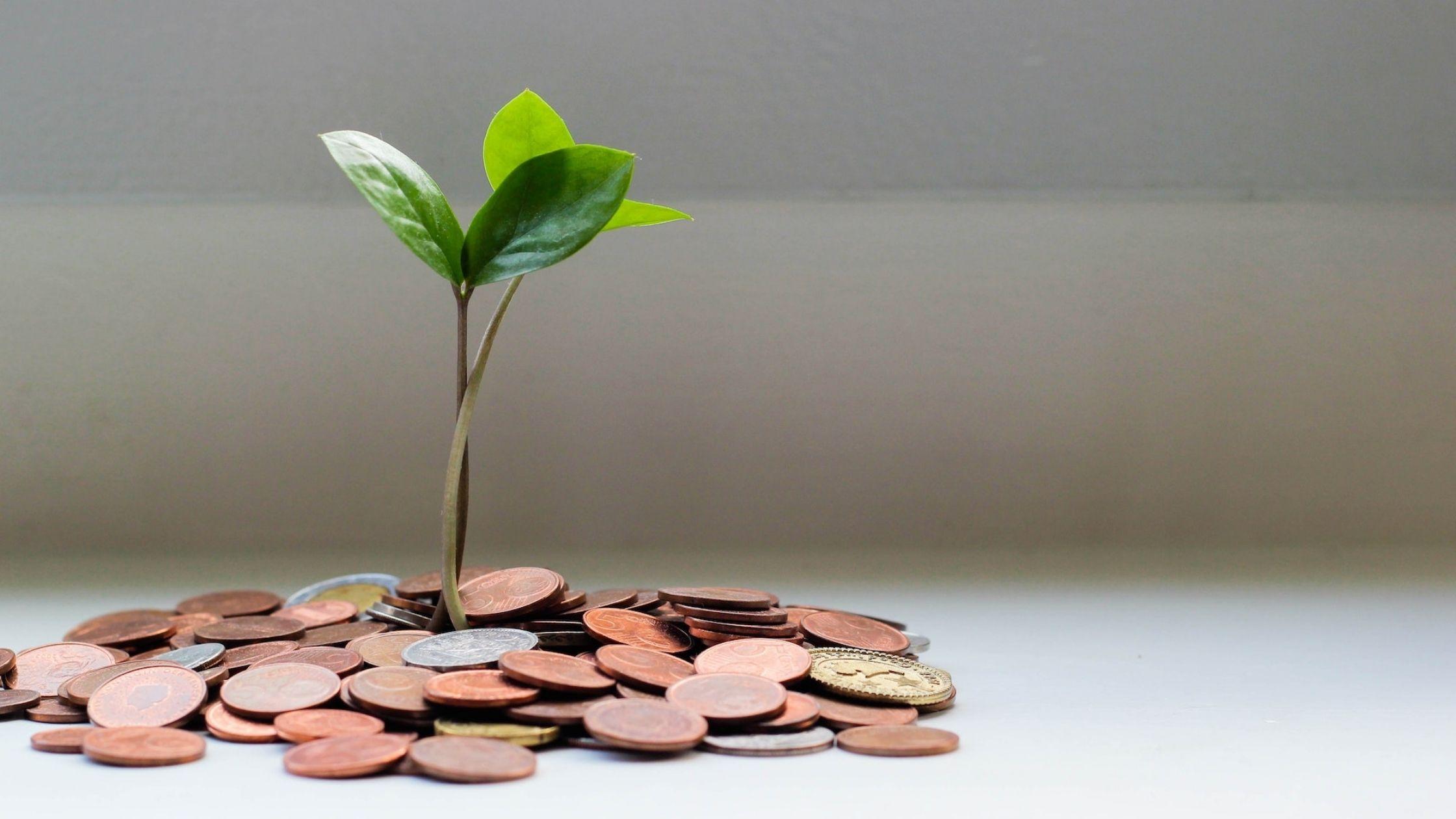 Come risparmiare: 4 metodi pratici per gestire i tuoi soldi con saggezza